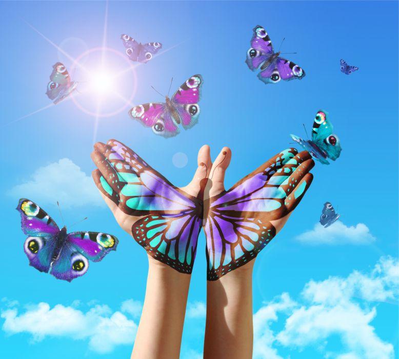 Butterflies 700px