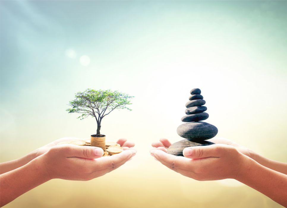 Tree and stones 700px
